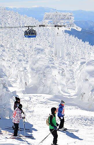 青空に映える樹氷 陽光差す蔵王温泉スキー場